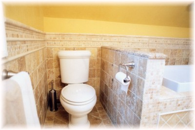 "Before you leave your ""little retreat"", you may need to use again this nicely ""tucked away"" Kohler Revival toilet..."