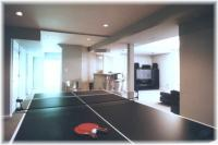 Ping Pong Table Area